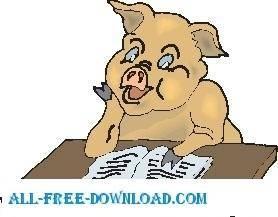 Pig Reading