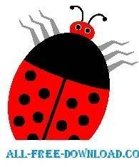 Ladybug 14
