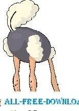 Ostrich Head in Sand 5