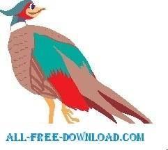 free vector Pheasant Smiling