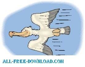 free vector Pelican Flying