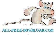 Rat Angry 1