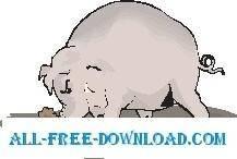 free vector Pig Digging in Mud