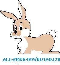 Rabbit 31