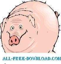 Pig 27