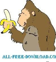 free vector Gorilla 6