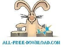 Rabbit Drumming