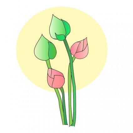 free vector Lotus