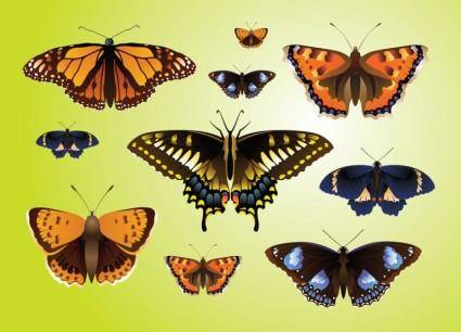 free vector Realistic Butterfly Vectors