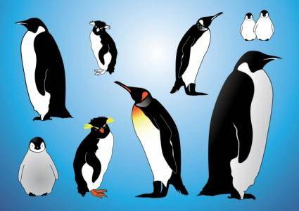 free vector Penguins Vectors