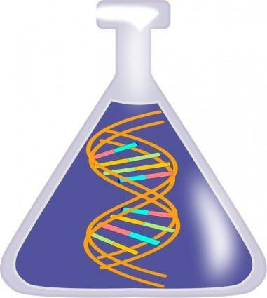 free vector DNA in a bottle