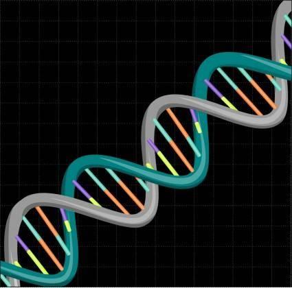 free vector DNA