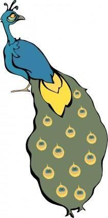 Cartoon bird 14