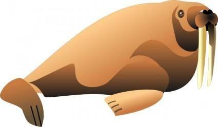 free vector Walrus