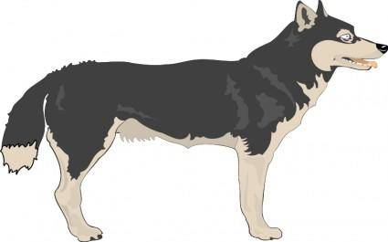 free vector Wolf