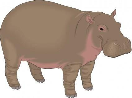 free vector Hippopotamus
