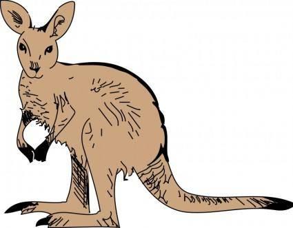 free vector Kangaroo 3