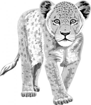 free vector Leopard