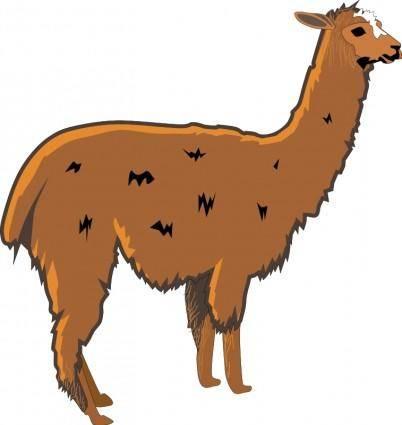 free vector Llama