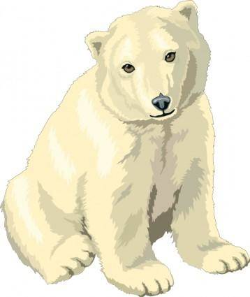 free vector Polar Bear