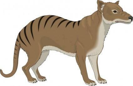 Animal 12