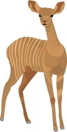 free vector Animal 13