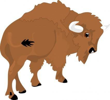 free vector Bison 2