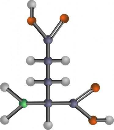 free vector Glutamic acid (amino acid)
