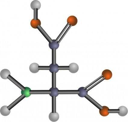Aspartic acid (amino acid)