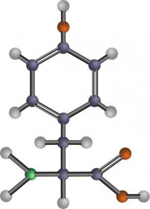 free vector Tyrosine (amino acid)