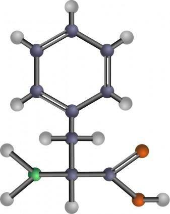 Phenylalanine (amino acid)