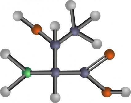 Threonine (amino acid)