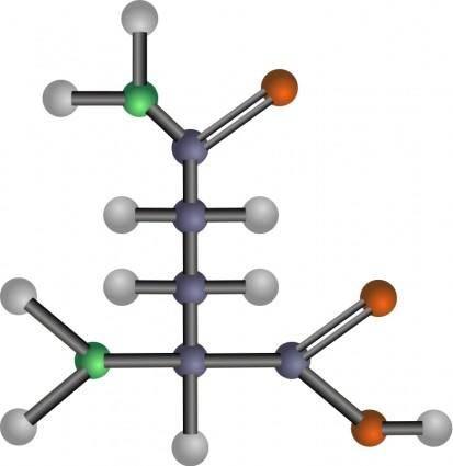 Glutamine (amino acid)