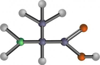 Alanine (amino acid)