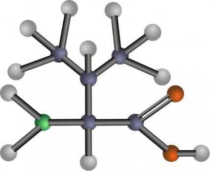 Valine (amino acid)