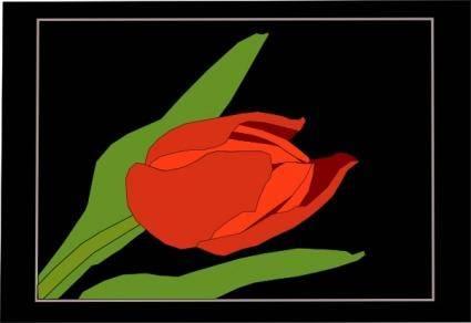 Tulipan clip art