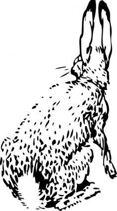 Rabbit From Behind clip art