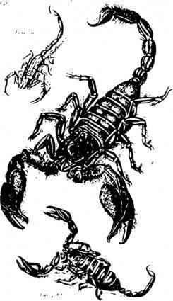 free vector Black Scorpions clip art