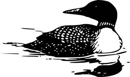 Common Loon clip art