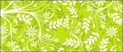 free vector Green background patterns
