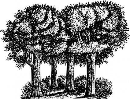 Group Of Trees clip art