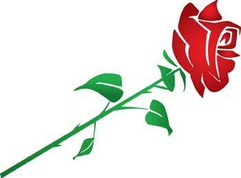 free vector Rose Flower Vetor 12