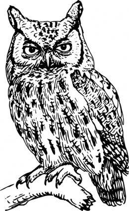 free vector Owl clip art