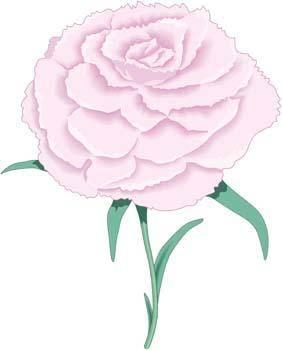 Rose Flower Vetor 10