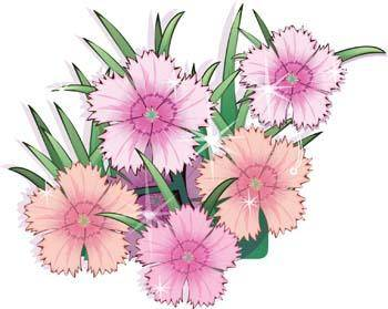 free vector Flower of Seven color 21