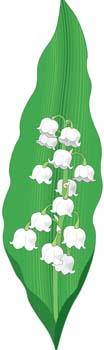 free vector Landish Flower 2