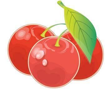 free vector Cherry 11