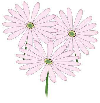 free vector Flower of Seven color 2