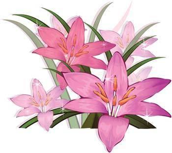 free vector Gladiolus Flower 3
