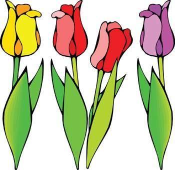 free vector Tulip Flower 4